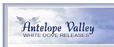 antelope valley white dove release